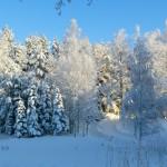 Vintern närmar sig