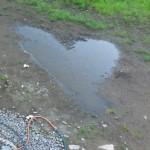 Hjärta i vattenpöl